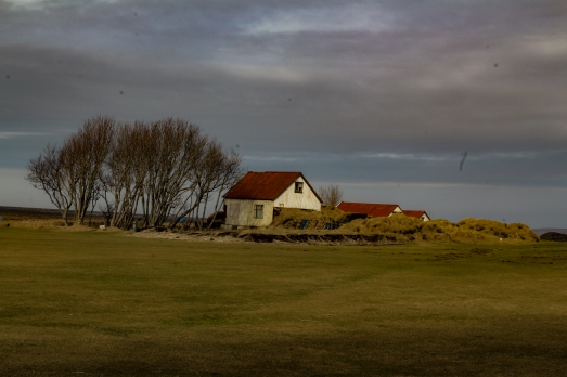 iceland (45 of 67)