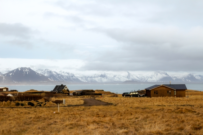 iceland (8 of 14)