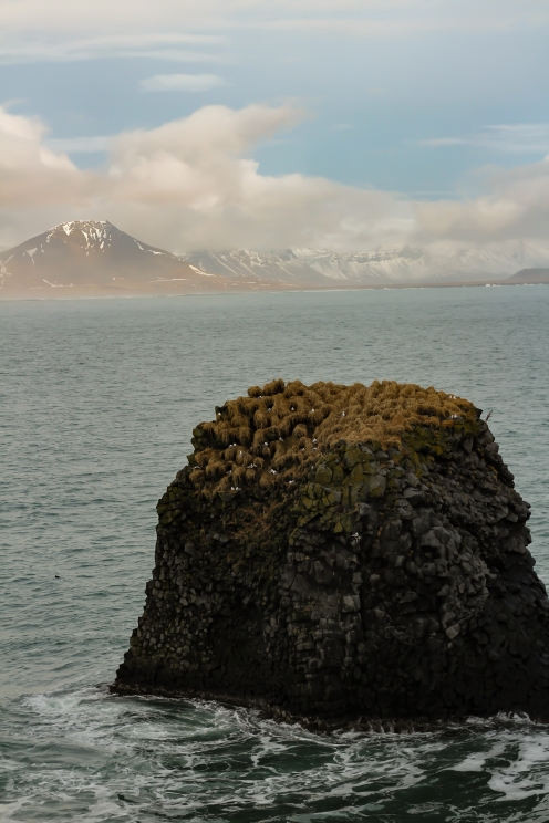 iceland. (16 of 17)